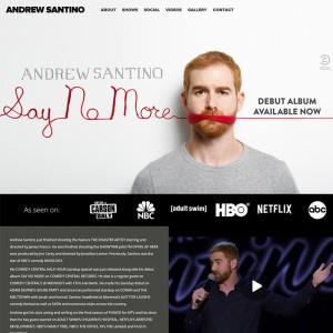 Actor/Comedian WordPress Website