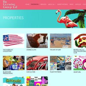 Licensing Business WordPress Website